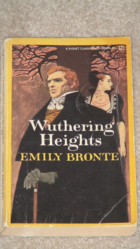 bronte single parents Brontë's (1816–1855) novel jane eyre, published in 1847, by focusing on its   person or thing at all times or in all circumstances the condition of being a single  individual the  physically dependent on its parents or primary caregivers.